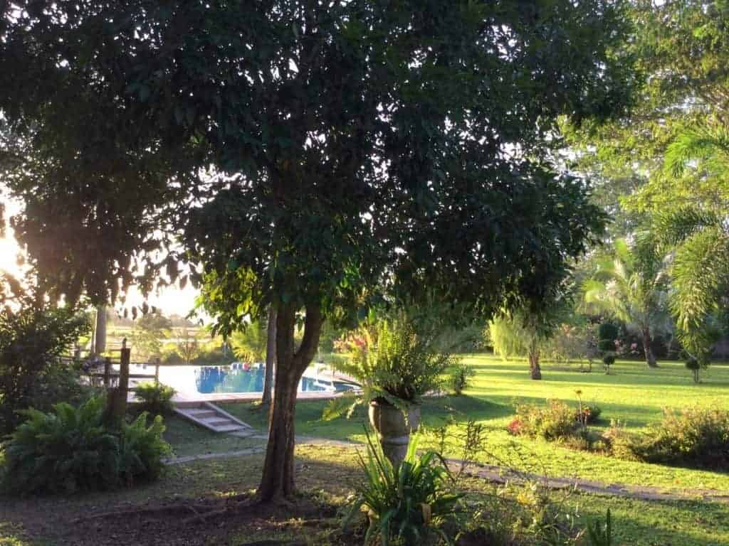 Outside View with Pool 3 | Private Villa with Pool and Land for Sale | Ulu Melaka Langkawi
