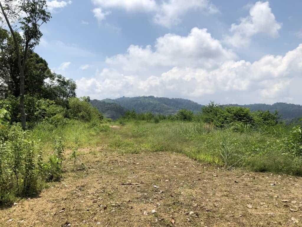 View 3 | Elevated Land for Sale Temonyong Langkawi | Langkawi Real Estate