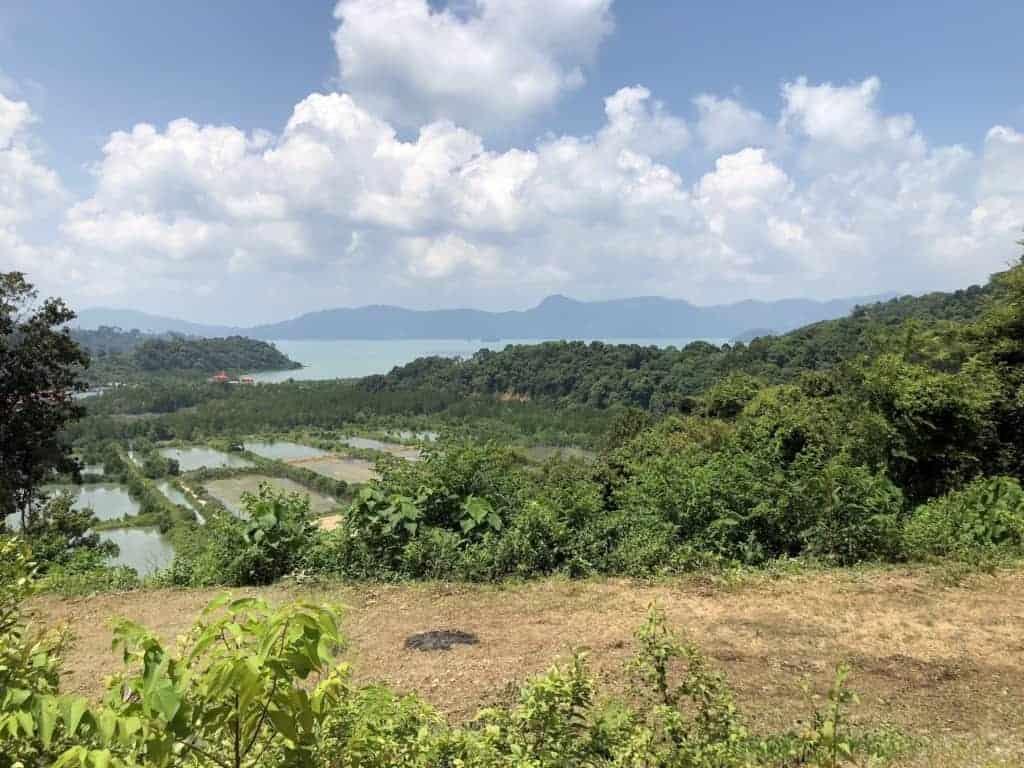 Padi Facing View | Elevated Land for Sale Temonyong Langkawi | Langkawi Real Estate