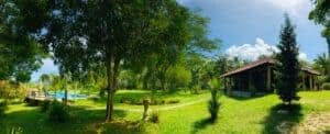 Contemporary Tropical Villa & Land For Sale